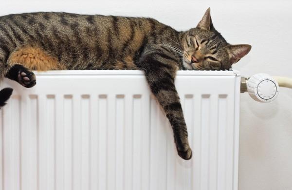 comprar gasóleo calefacción. Gasóleo C Valencia