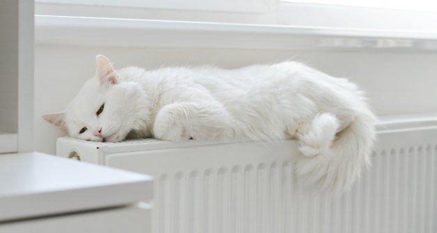 Precio del gasoil de calefacción