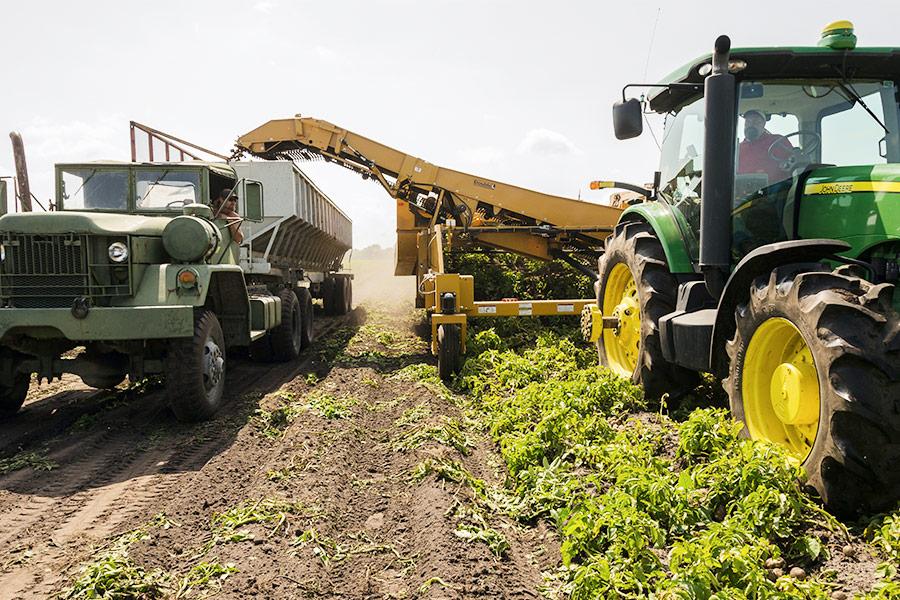 Requisitos para comprar gasoil agrícola